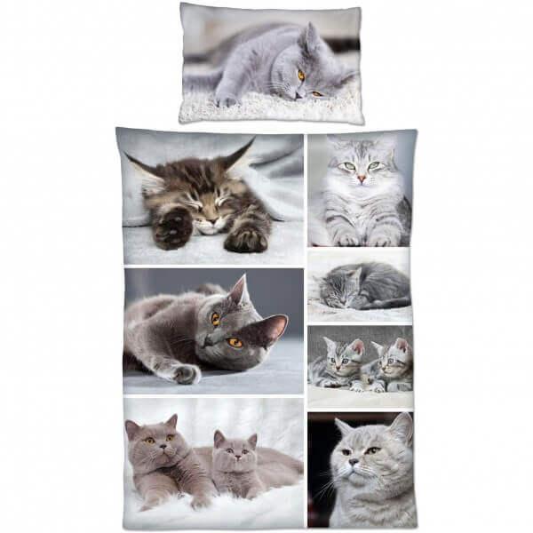 Bettwäsche Katzen