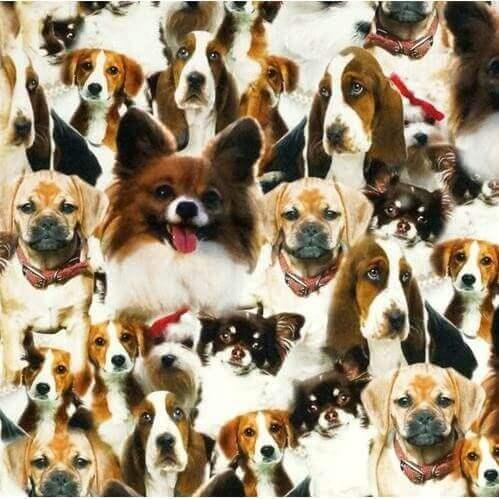 Kissen mit Tierdruck-Motiv Hunde