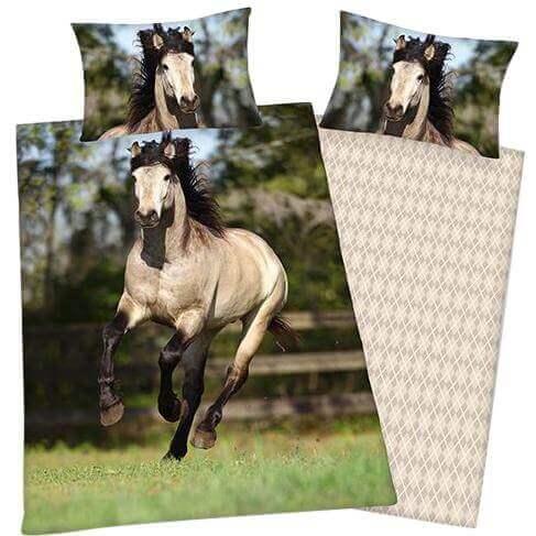 Bettw 228 Sche Young Collection Galoppierendes Pferd Tiere
