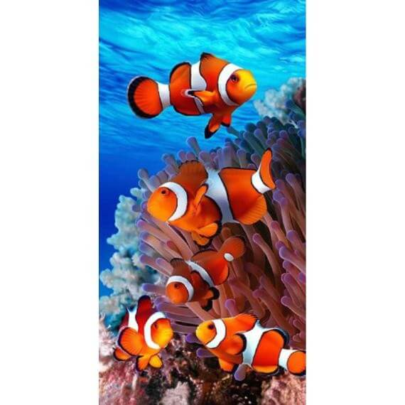 Strandtuch Nemo