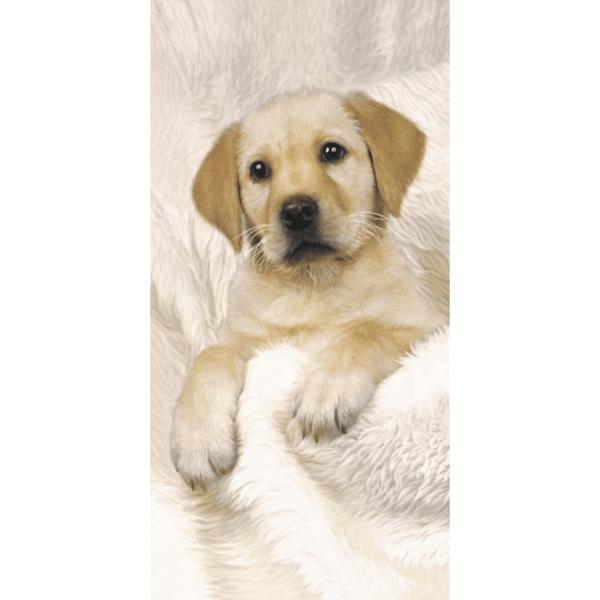 Strandtuch Hund-Labrador