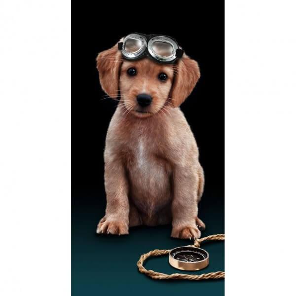 Strandtuch Flying Dog