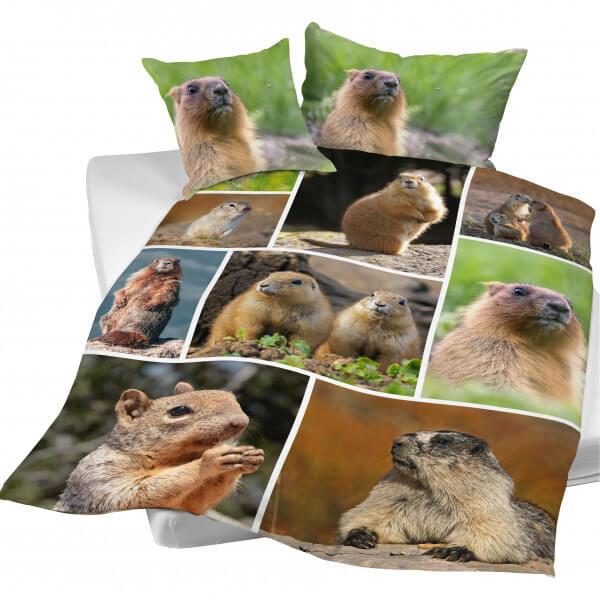 Bettwäsche Marmotte «Murmeli»